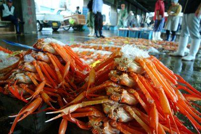 香住港のセリ市場で上物を求めて奮闘中!