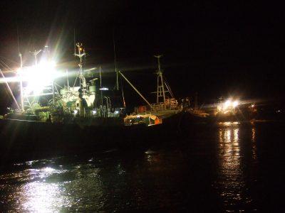 柴山港を数珠つなぎに出港~松葉かに漁スタートです